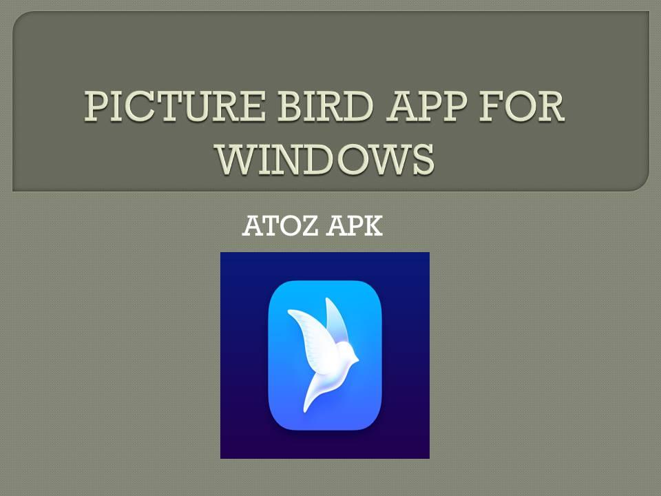 PICTURE BIRD APP FOR WINDOWS