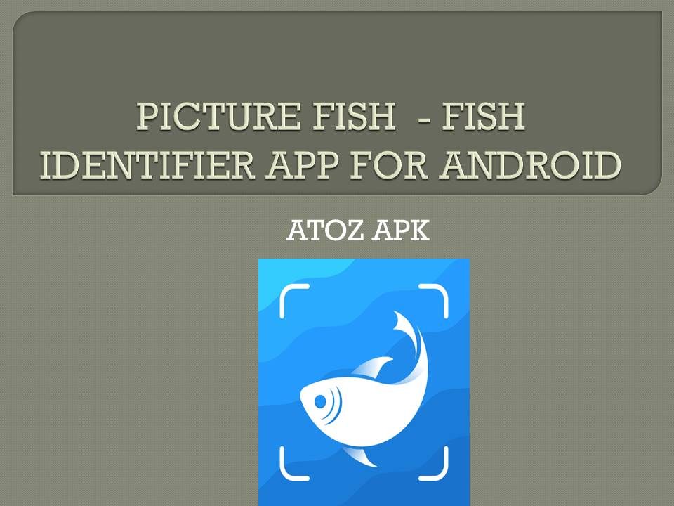 PICTURE FISH - FISH IDENTIFIER APP FOR ANDROID