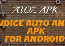TTS Voice Auto Answer